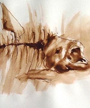 mordente noce su carta, 29.7×41.8 cm., 2002