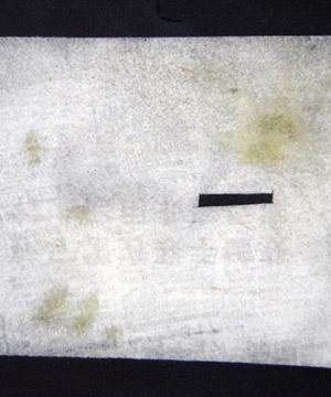 monotípia i oli sobre paper, 15×21 cm., 2005