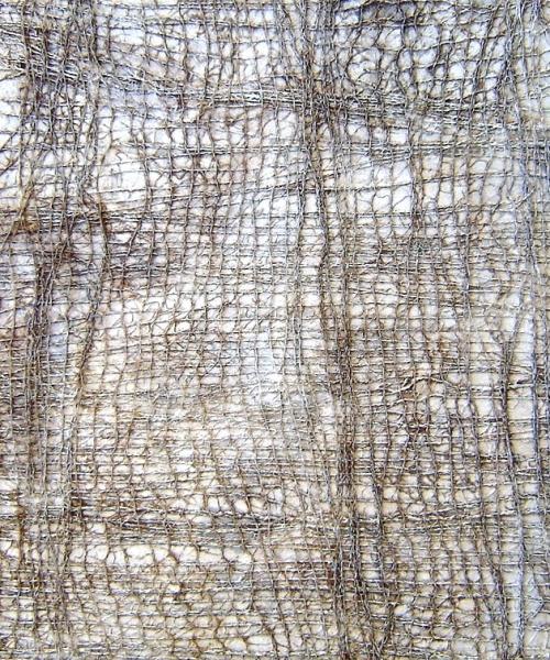 acrílic i malla sobre fusta, 70×100 cm., 2006