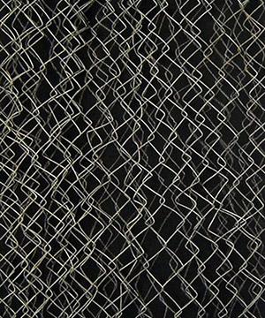 tremp de caseina, grafit i malla metàl·lica sobre fusta, 160×53 cm., 2007