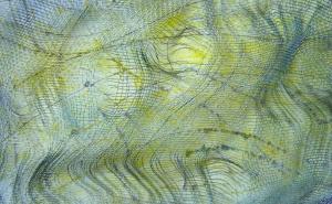 acrílic i malla metàl·lica sobre cartró, 12×19 cm., 2005