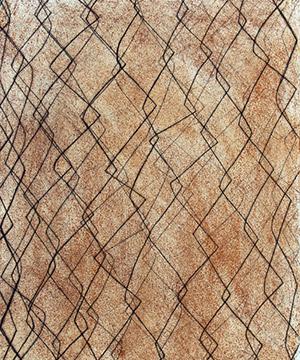 gravat, òxid i grafit, 42×29.7 cm., 2006