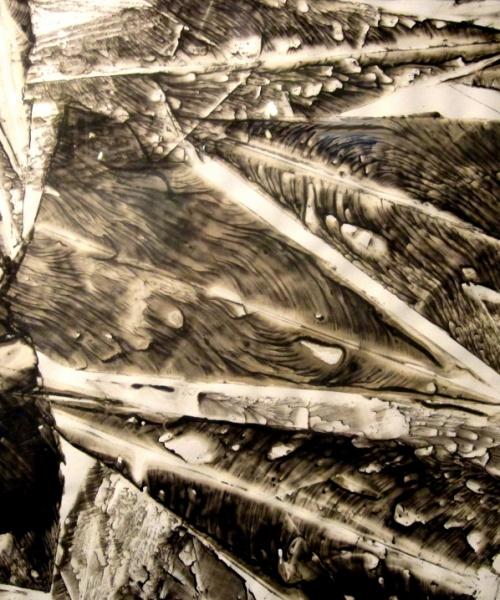 """Va' pensiero sull'ali dorate..."", tinta xinesa sobre paper, 70x100 cm., 2009"