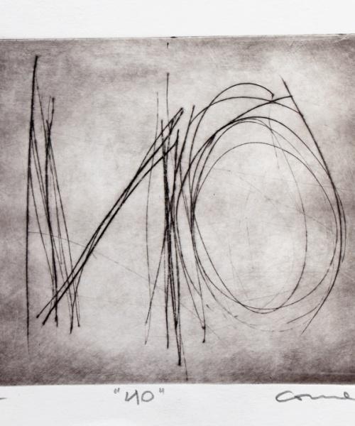 (Auto)afirmació1, gravat, 2009